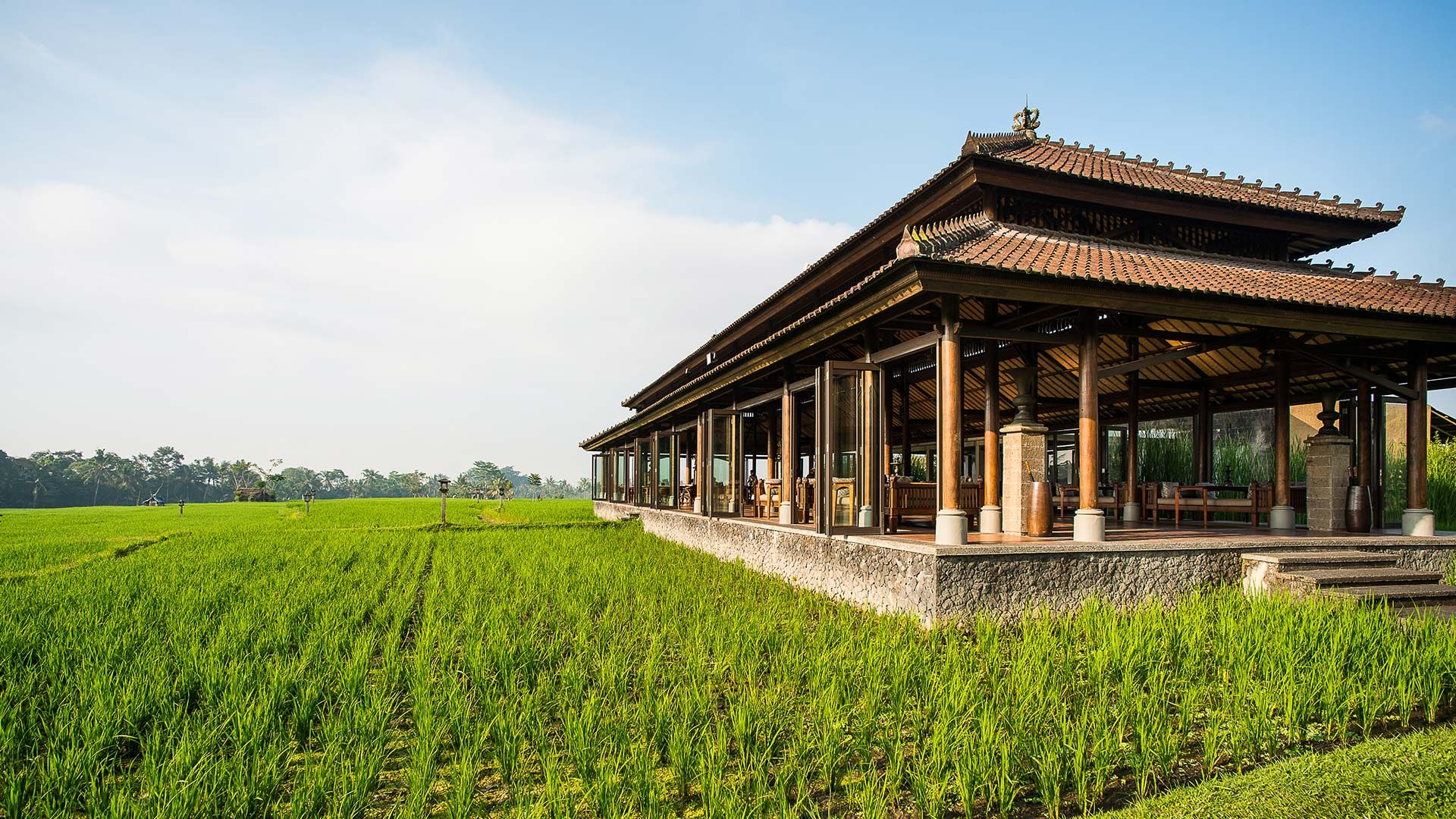 Luxury Hotel Marketing | The Chedi Club Tanah Gajah Ubud Bali | Hotel Surrounded by Rice Paddies