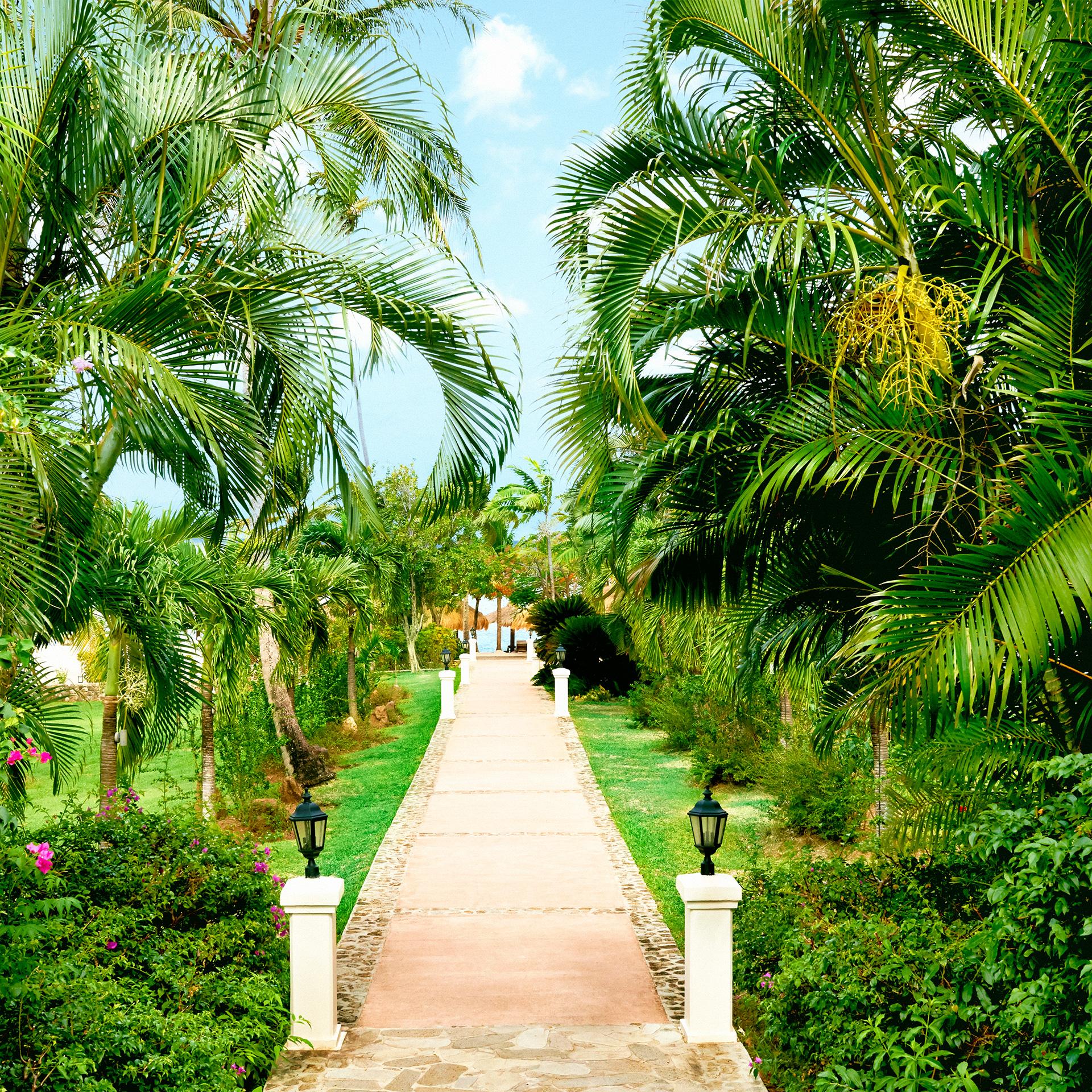 Sugar Beach Residences | Luxury Property Marketing | Resort Gardens and Walkway