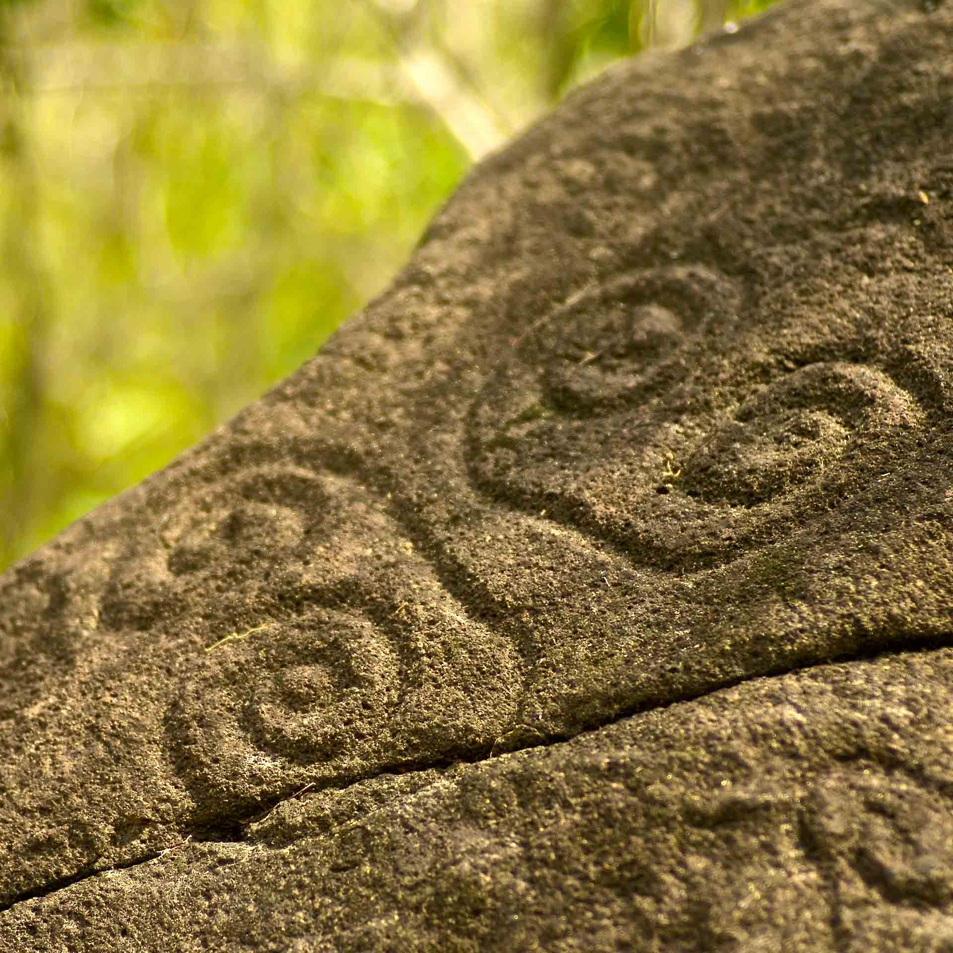 Photo of historic carving that inspired the logo | Luxury Resort marketing | Pearl Island