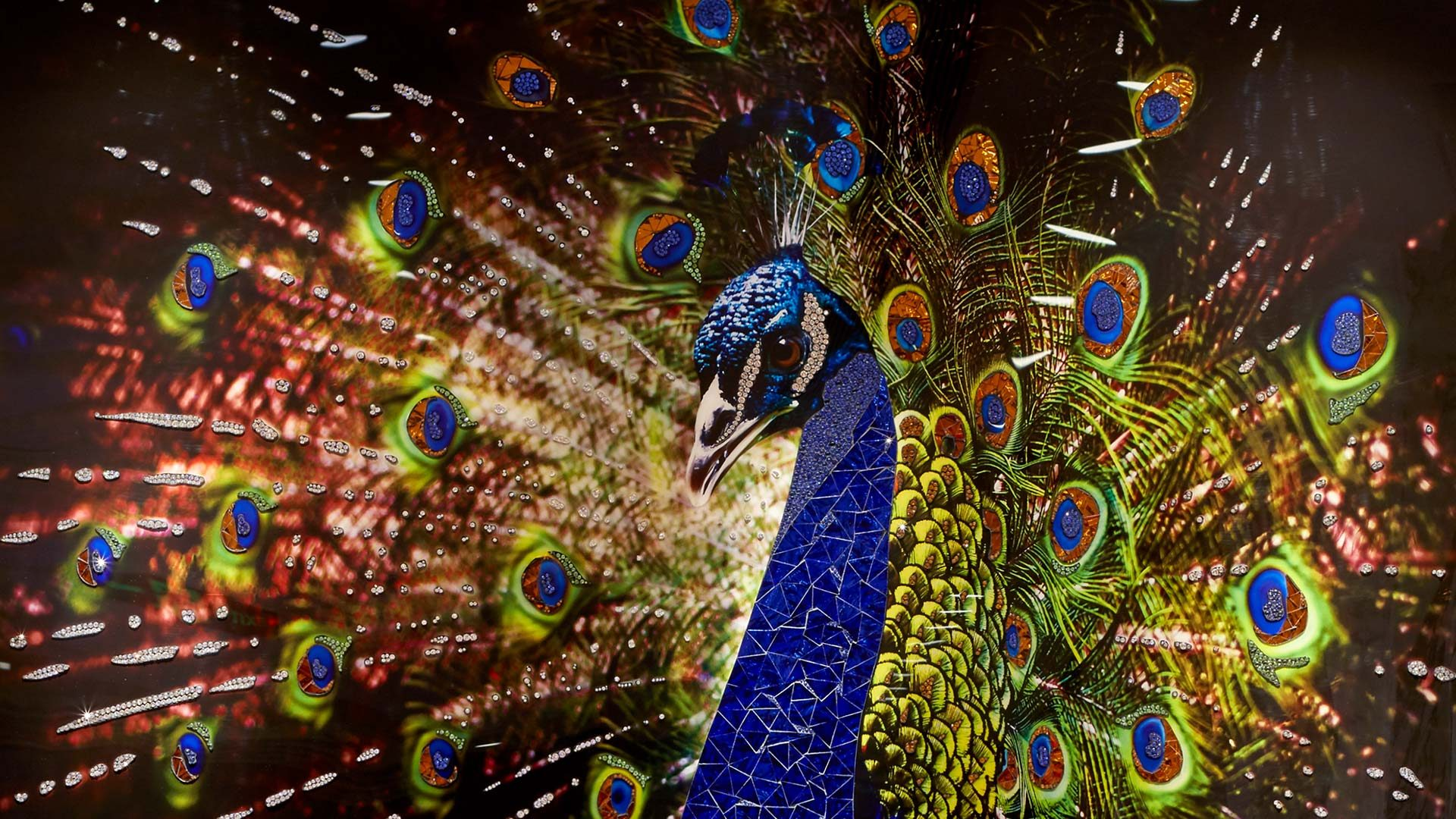 Swarovski Peacock Visionnaire | Webstie Development | Kingsland Linassi